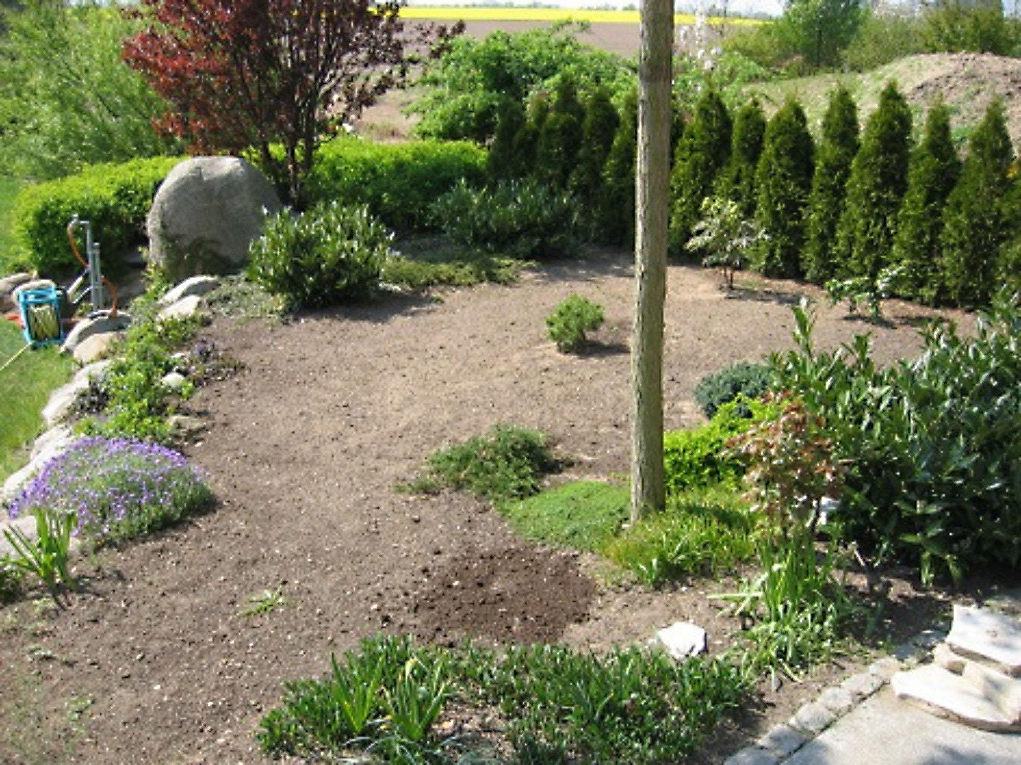 Von der Unkrautrabatte zum Steingarten: Garten durch moderne Gestaltung aufwerten