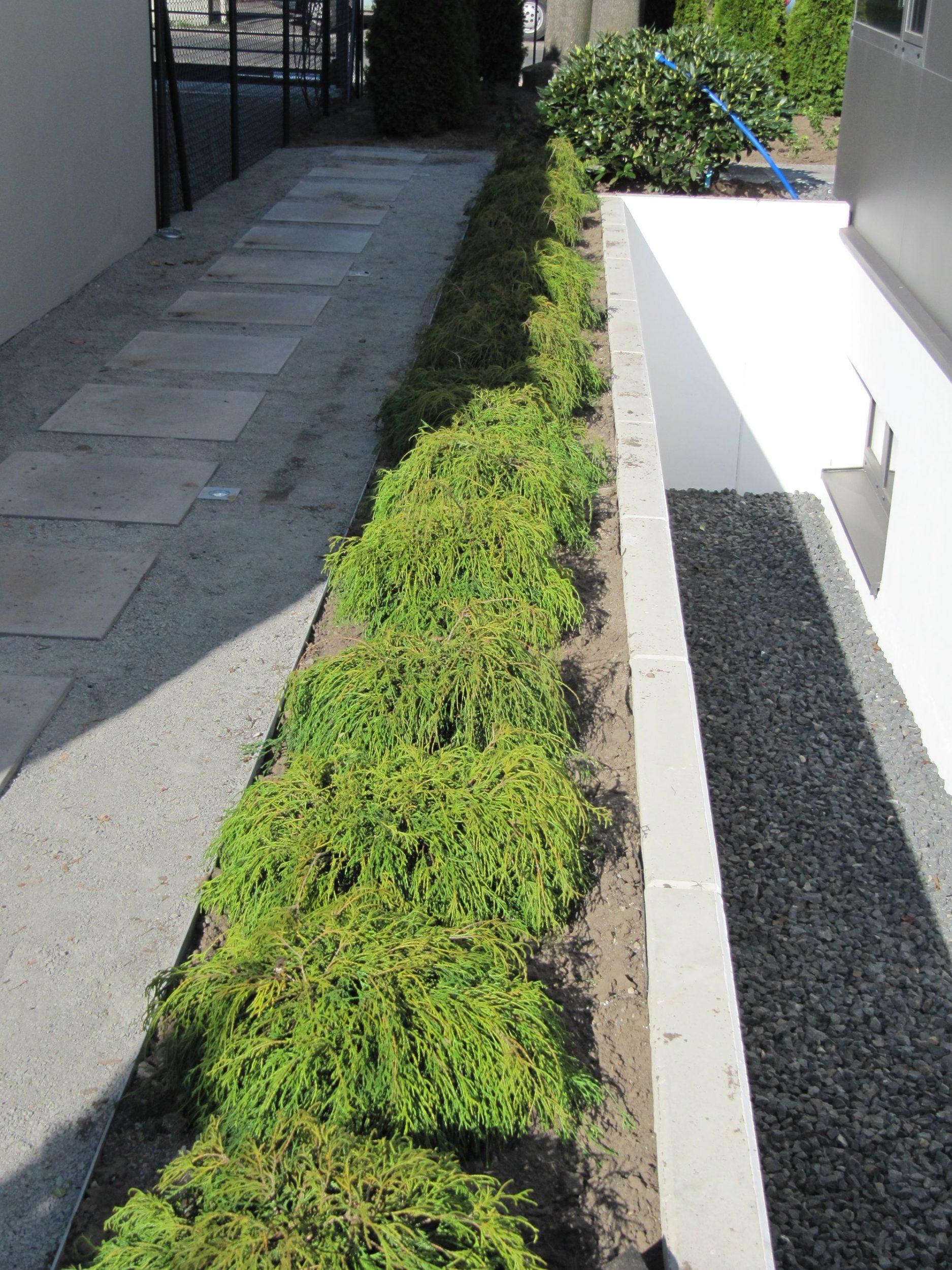 Geometrische Formen für einen modernen Garten