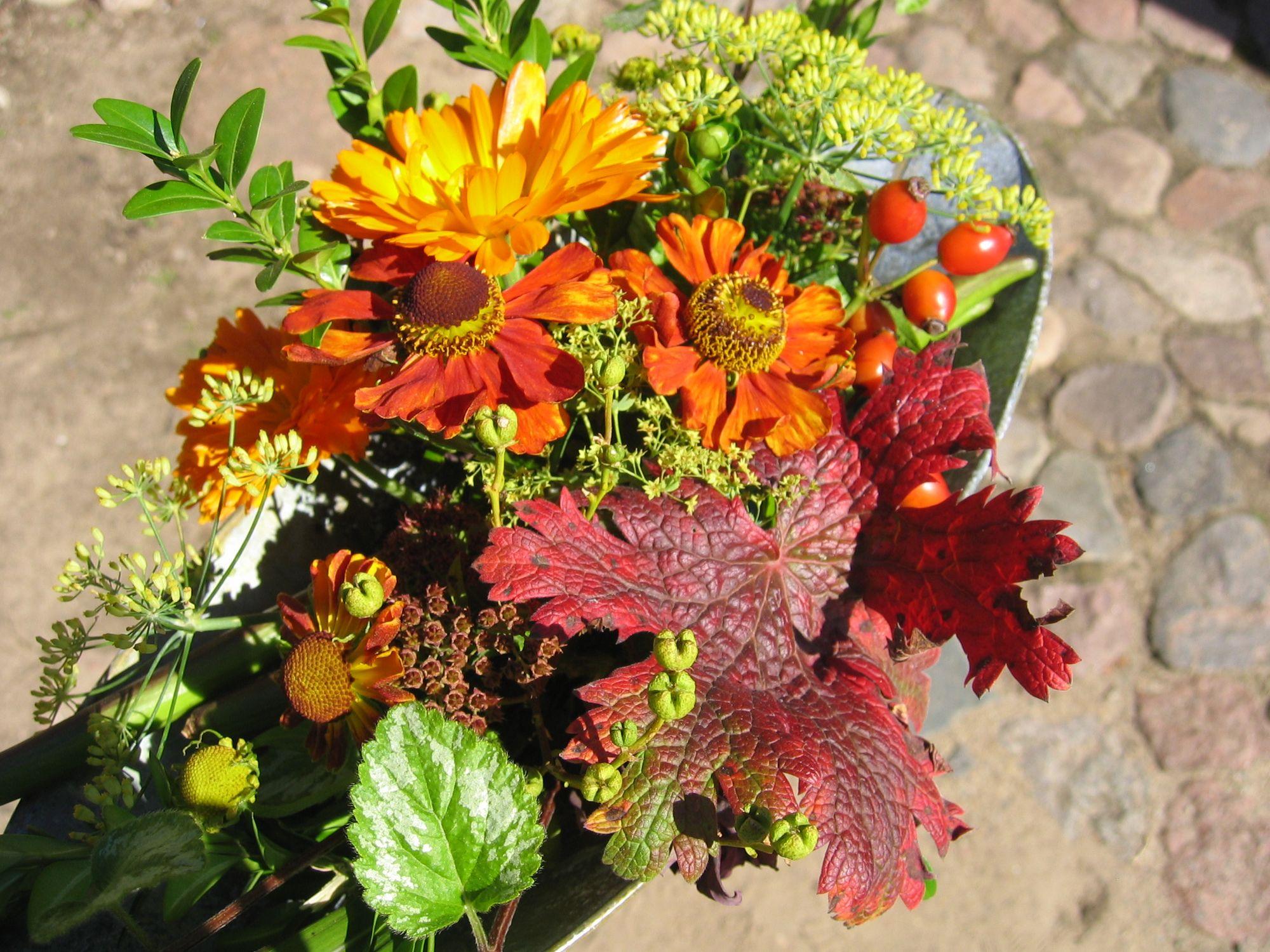 Ideen für Blumenstrauß orange gelb aus Herbstblumen