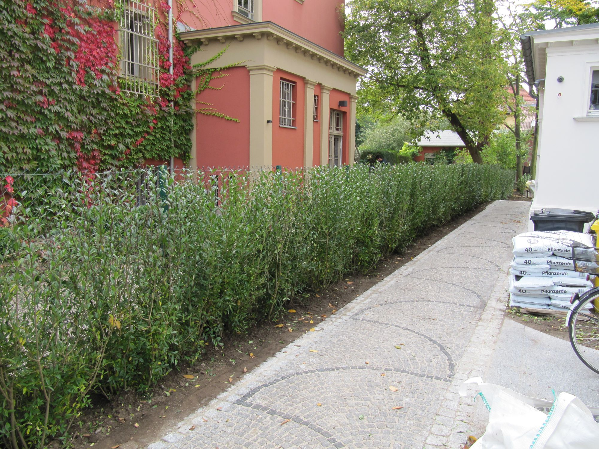 Moderne Gartengestaltung unter Einbeziehung der vorhandenen Bestandsgehölze