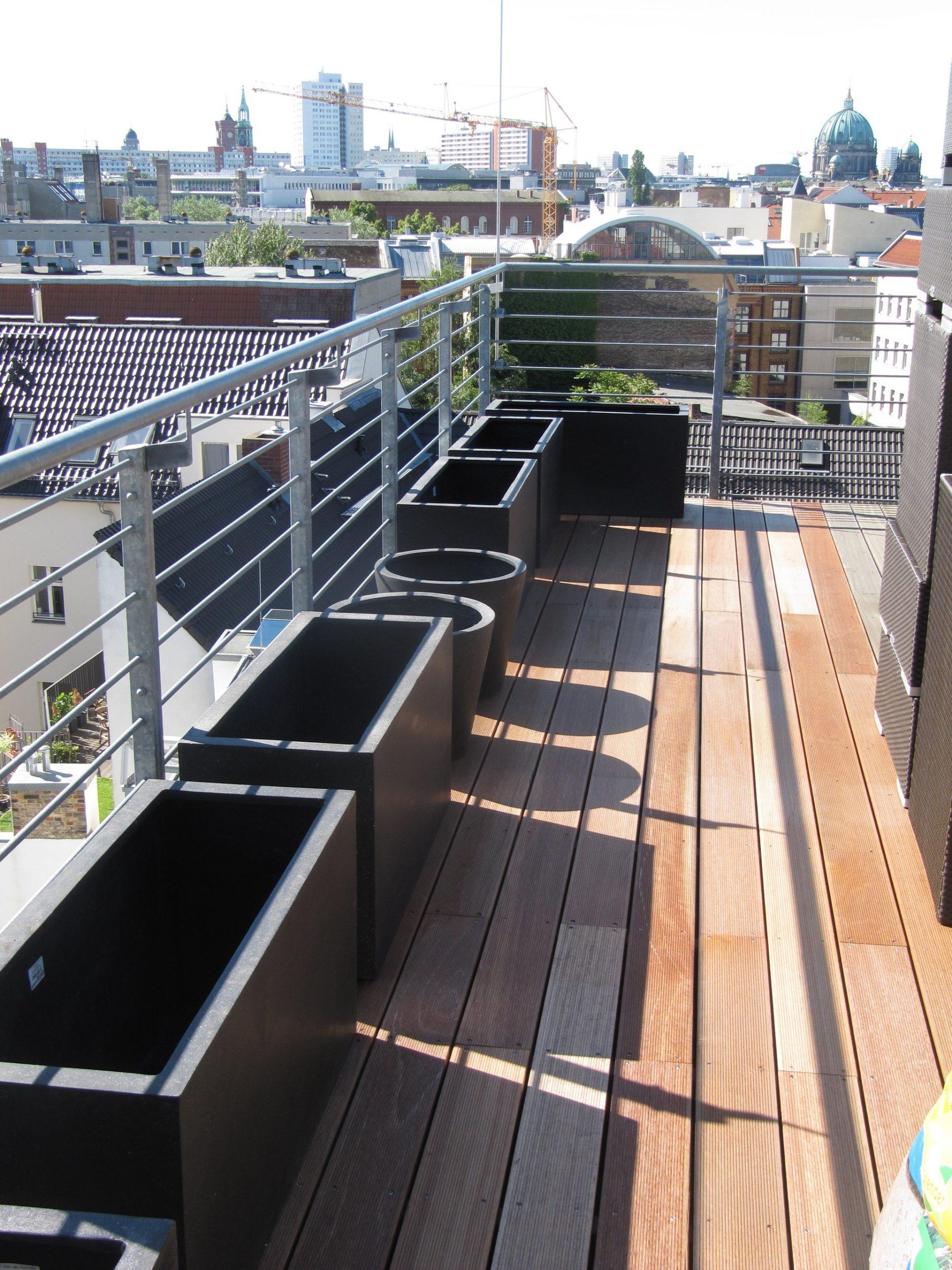 Dachterrassengestaltung mit Pflanzen in Berlin, Sichtschutzbepflanzung