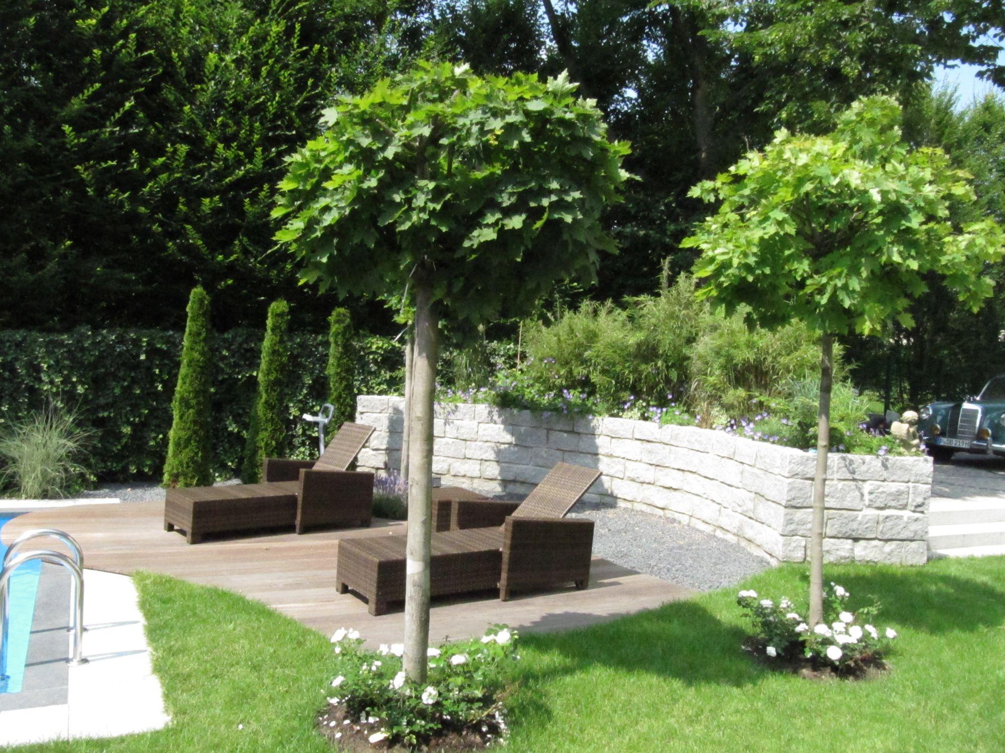 Garten mit Pool, Terasse und Freizeitflächen für die ganze Familie