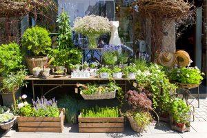 Boutique Gartengenmöbel und Gartenaccessoires Gartenzubehör aus Berlin