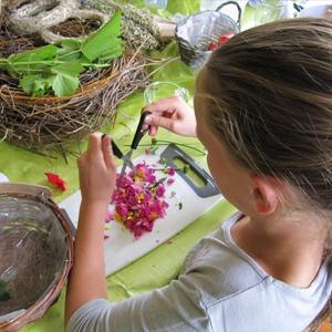 Kinder Workshops und Gartenseminare für Schüler in der GartenWrkstatt Berlin